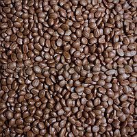Мастербатч коричневый  BROWN MG83546