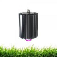 Светодиодный светильник ПромЛед Профи-100-ФИТО (45°)
