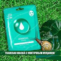 Molecula Daily Snail Essence Mask [J:ON]