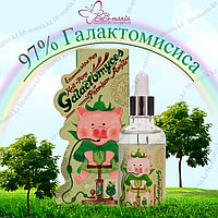 Hell-Pore Galactomyces Premium Ample 97% [Elizavecca]