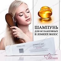 Ceraclinic Dermaid 4.0 Botanical Shampoo 100 [Evas]