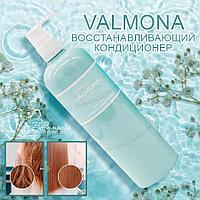 Valmona Recharge Solution Blue Clinic Nutrient Conditioner [EVAS]