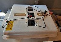 Инкубатор «Несушка» на 77 яйца, Автоматический переворот, цифровой терморегулятор, 12В, с вентилятором и влаж