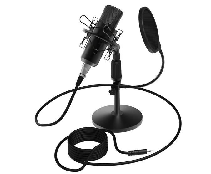 Студийный микрофон Ritmix RDM-175 черный
