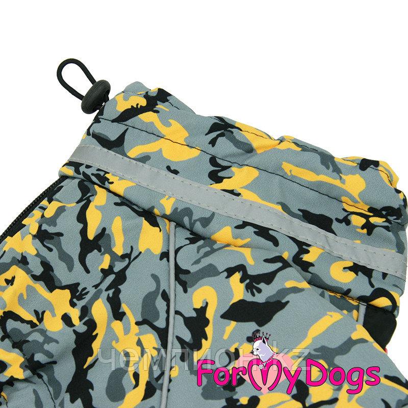 FW850-2020 M, For My Dogs, Фор Май Дог, Зимний комбинезон серо/жёлтый, для мальчиков - фото 2