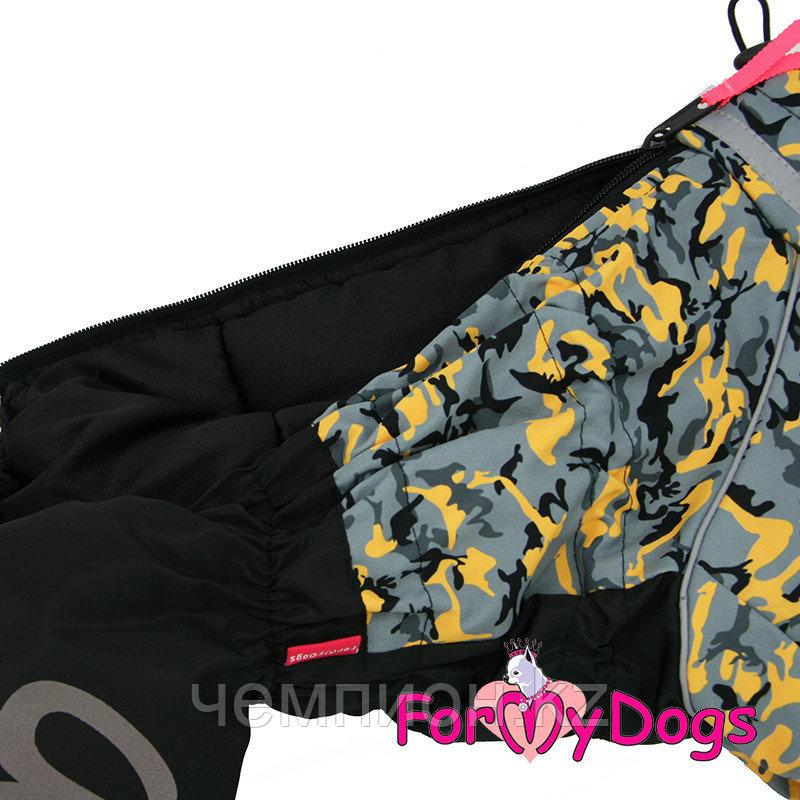 FW850-2020 M, For My Dogs, Фор Май Дог, Зимний комбинезон серо/жёлтый, для мальчиков - фото 3