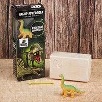 Набор археолога серия с фигуркой-игрушкой динозавра 'Брахиозавр'