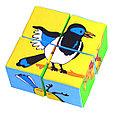 Кубики детские птицы, фото 2
