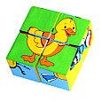 Кубики детские птицы, фото 4