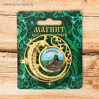 Магнит с ящерицей «Челябинск»