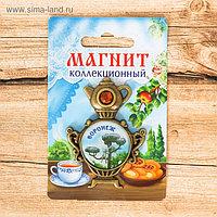 Магнит в форме самовара «Воронеж. Котёнок с улицы Лизюкова»