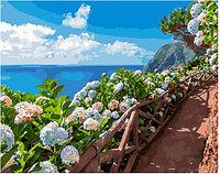 Картина по номерам GX 34289 Цветочная тропа у моря 40*50