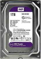 "Жёсткий диск WD Purple Western Digital WD10PURZ 1ТБ 3,5"" 5400RPM 64MB (SATA-III) DV&NVR"