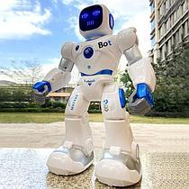 Игрушки Роботы для детей сенсорные и на радиоуправлении
