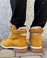 Ботинки Cott devision, фото 1