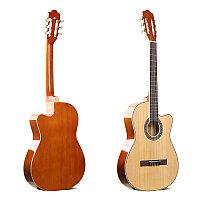Гитара Deviser L-330 N