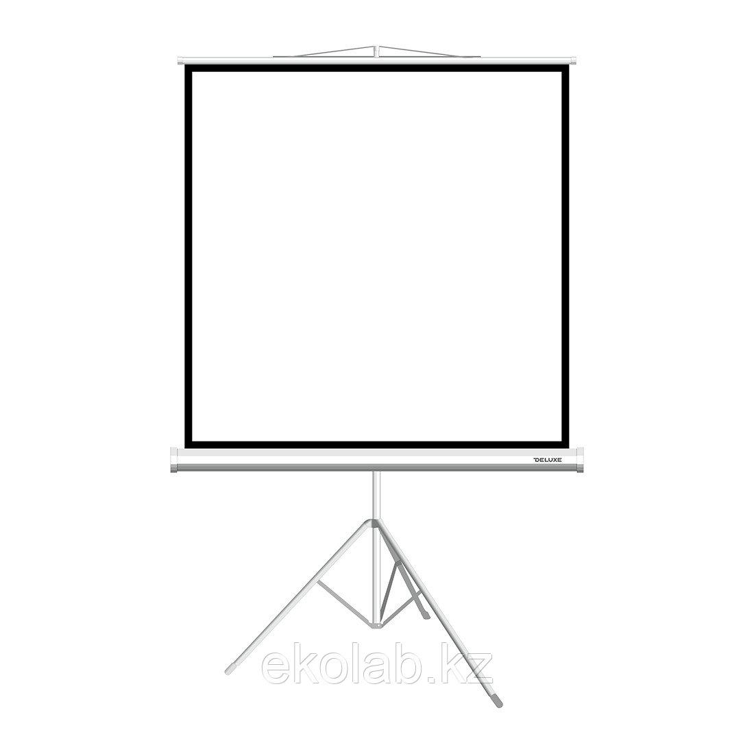 """Экран на треноге Deluxe DLS-T244x183W (96""""х72""""), Ø - 120"""", Раб. поверхность 244х183 см., 1:1"""