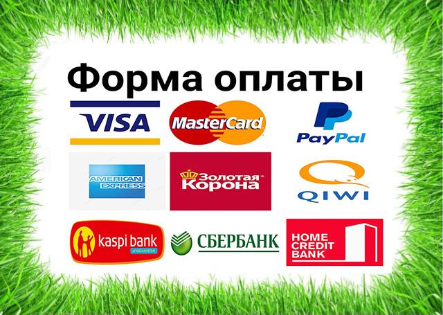 Форма оплаты любая,платежные карточки в том числе
