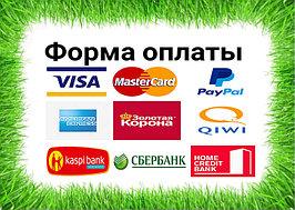 Форма оплаты любая,платежные карточки в том числе 1