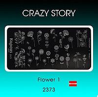 Пластина для стемпинга Crazy story Flower