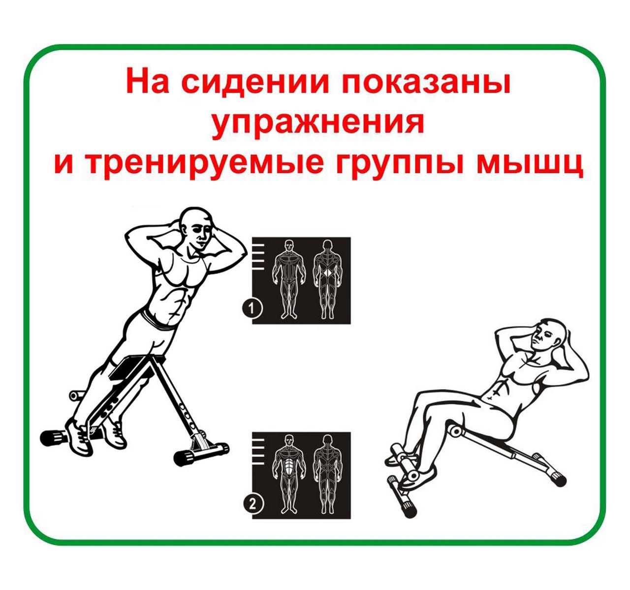 Скамья для пресса и мышц спины 140 кг Россия - фото 4