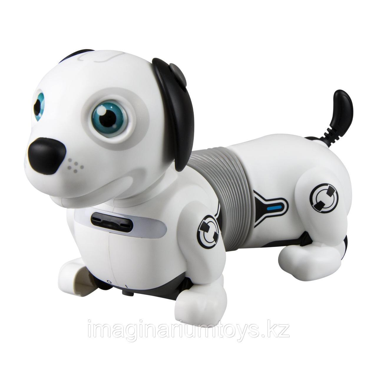 Собака робот Дэкел Джуниор Silverlit