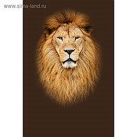 "Фотообои Moda Interio ""Лев"" (из 2-х листов), 1,8 х 2,7м"