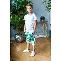 Шорты для мальчика Green Band, цвет зелёный, рост 122-128 см