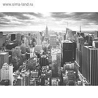 """Фотообои Moda Interio """"Нью-Йорк с высоты"""" (из 4-х листов), 3,6 х 2,7м"""
