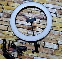 Кольцевая светодиодная селфи LED лампа 36 см со штативом 210 см