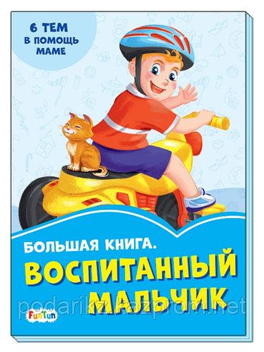 """Васильковые книжки, """"Большая книга. Воспитанный мальчик"""""""