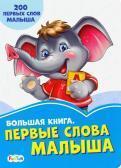 Васильковые книжки: Большая книга. Первые слова малыша