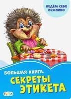 Васильковые книжки: Большая книга. Секреты этикета