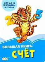 Васильковые книжки: Большая книга. Счёт