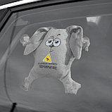 """Пошив и печать на """"кот на липучках в машину"""", фото 5"""