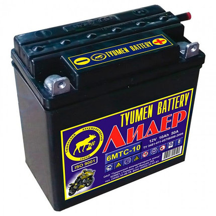 Аккумуляторная батарея Tyumen Battery Лидер 12В 9-10Ач, фото 2