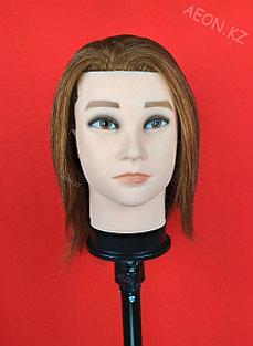 Голова-манекен мужской шатен волос (100%)  - 40 см