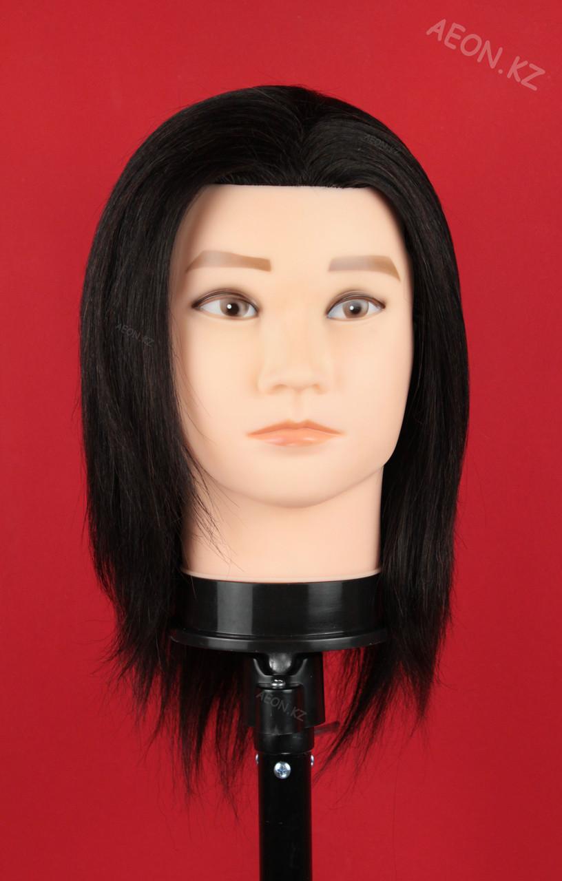 Голова-манекен мужской брюнет волос (100%)  - 40 см