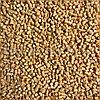 Мастербатч желтый YELLOW MH11048F