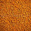 Мастербатч желтый YELLOW MH14046