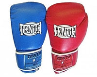 Перчатки боксерские TENTH