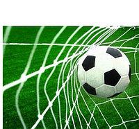 Сетка футбол