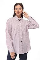 Женская осенняя хлопковая деловая большого размера блуза Anelli 893 красная-полоска 46р.