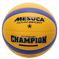 Мяч волейбольный MESUCA (5, Желтый/синий- Сары/к?к)
