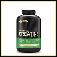 ON Creatine Monohydrate 600гр