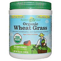 Amazing Grass, Органические ростки пшеницы, Витграсс (240 г)