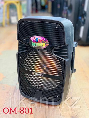 Колонка акустическая ОМ -801, фото 2
