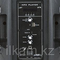 Колонка акустическая OM-802, фото 3