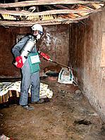 Обработка подвалов жилых домов в период пандемии
