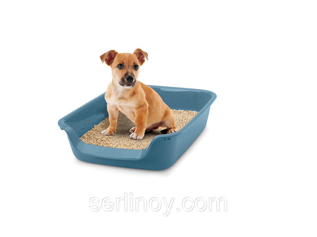 Лоток для щенков с низким входом Savic Junior (голубой камень) - фото 2